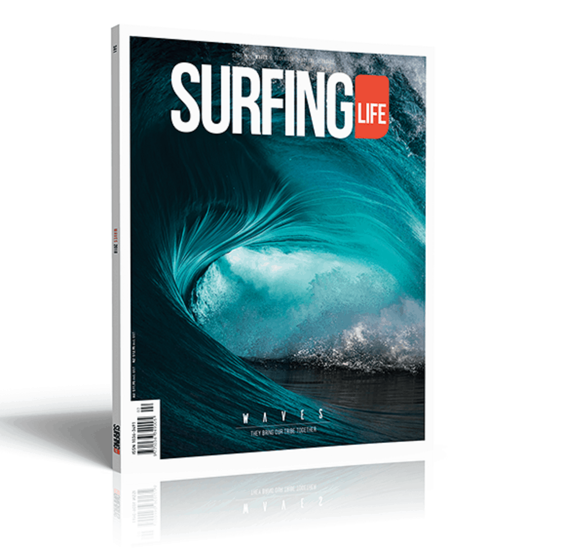 Surfing-Life-3D-Cover-341